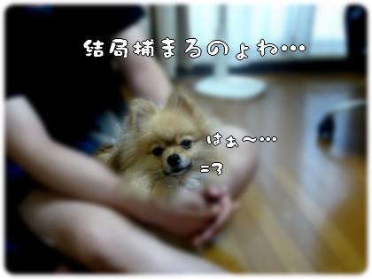 b0078073_2341215.jpg