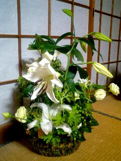お花を頂きました_b0050238_21242058.jpg