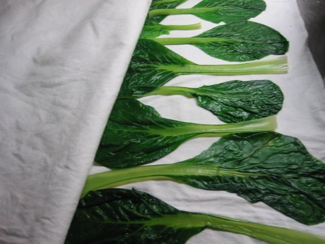 野菜のした処理_f0076552_1182449.jpg