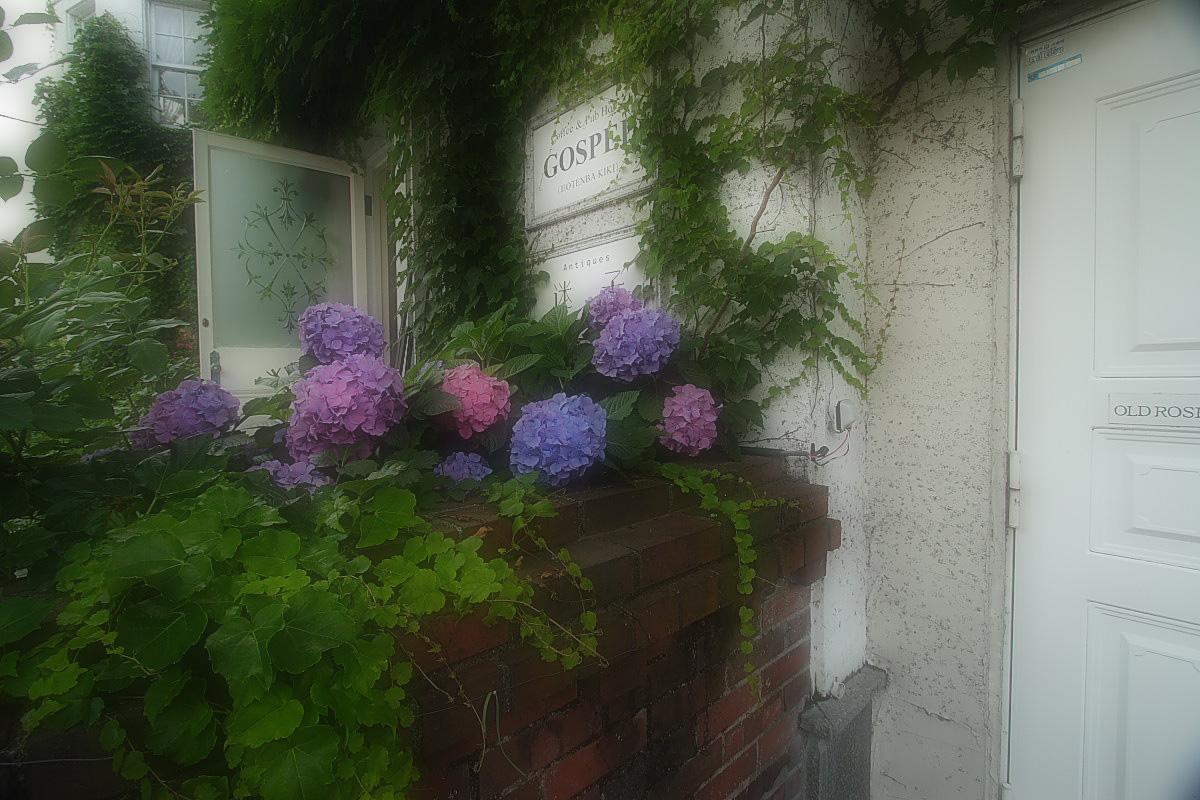 京都 旧OTENBA KIKI  <GOSPEL>_f0021869_054673.jpg