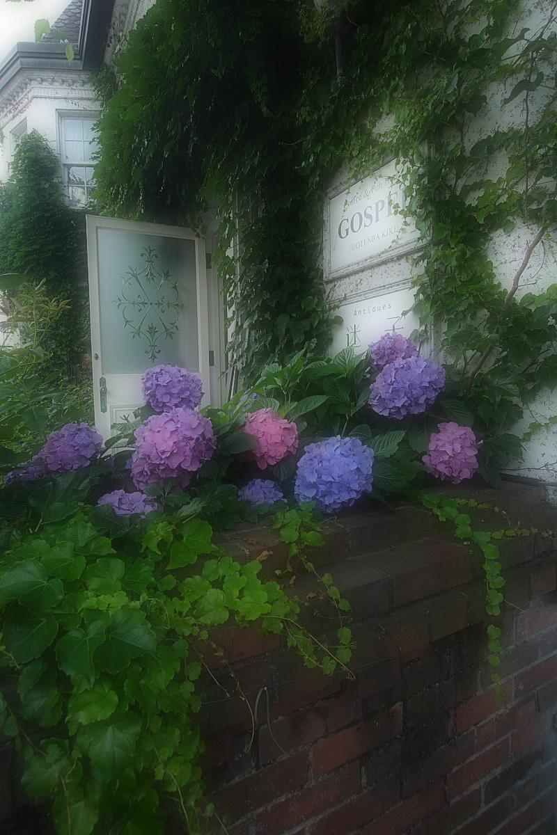 京都 旧OTENBA KIKI  <GOSPEL>_f0021869_071433.jpg