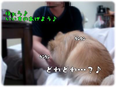 b0078073_23395081.jpg