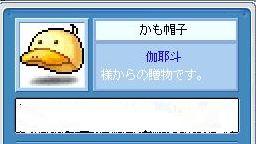 f0024312_20481018.jpg