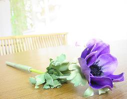 *アネモネのお花*_b0102217_15142213.jpg