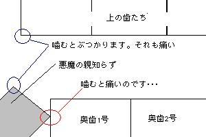 e0063133_1134140.jpg