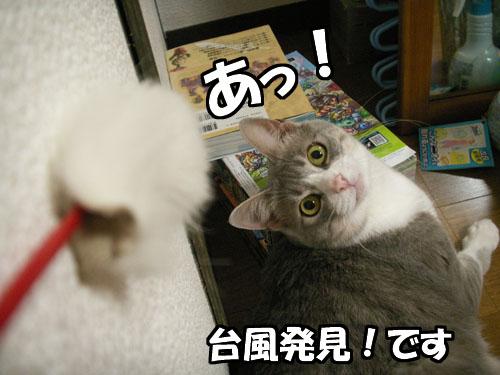 台風接近中・・・が_b0083267_23461899.jpg