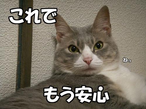 台風接近中・・・が_b0083267_23503125.jpg