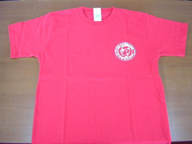 Tシャツ_d0038712_12375659.jpg