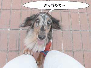 d0020869_16533740.jpg