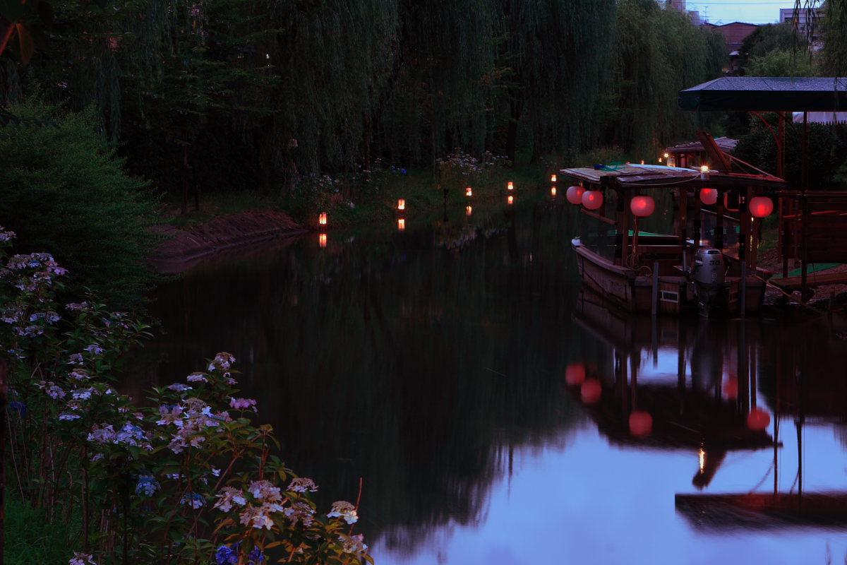 京都 伏見/十石船 ライトアップ_f0021869_150558.jpg