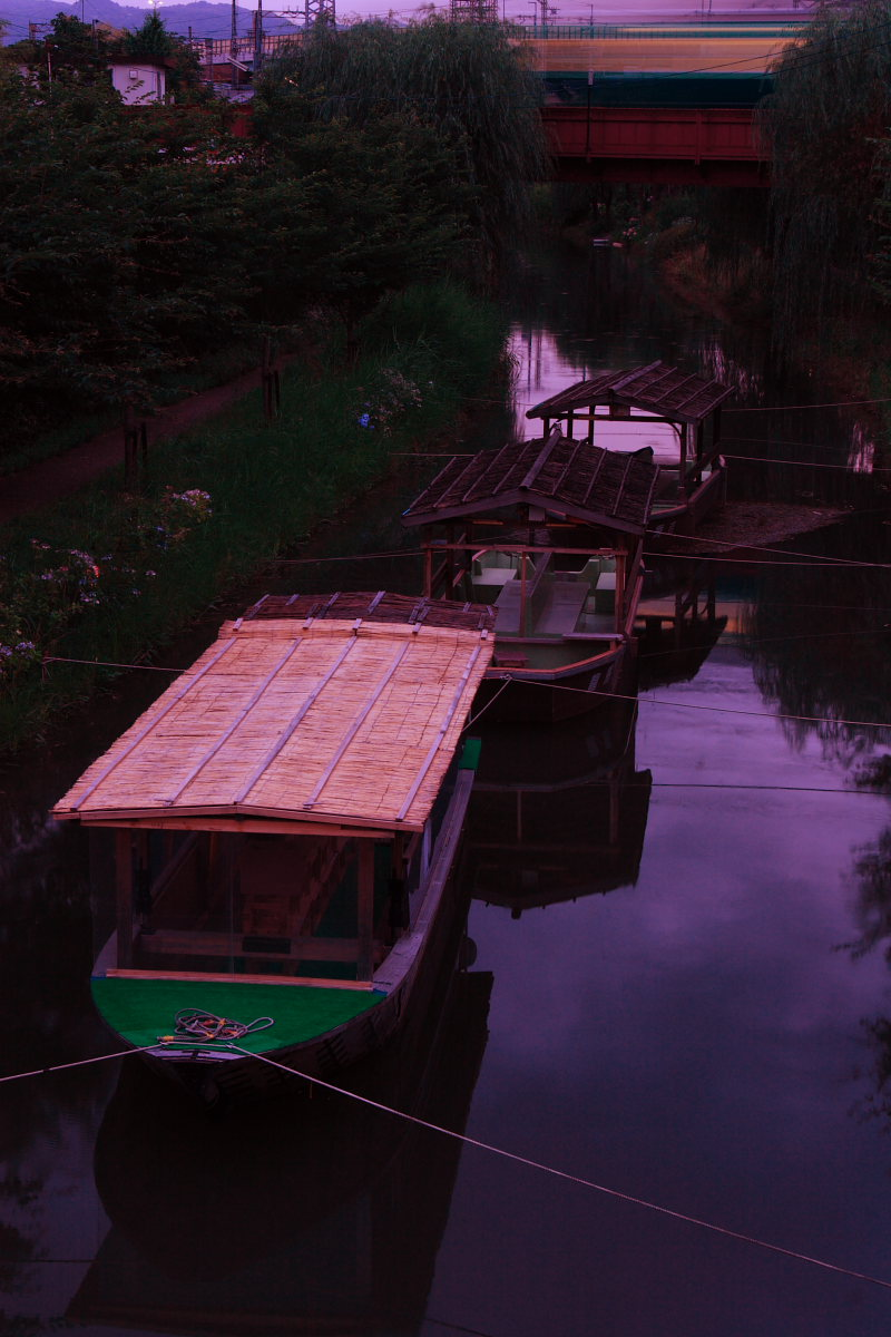 京都 伏見/十石船 ライトアップ_f0021869_1521274.jpg