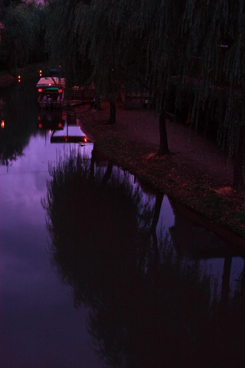 京都 伏見/十石船 ライトアップ_f0021869_152358.jpg