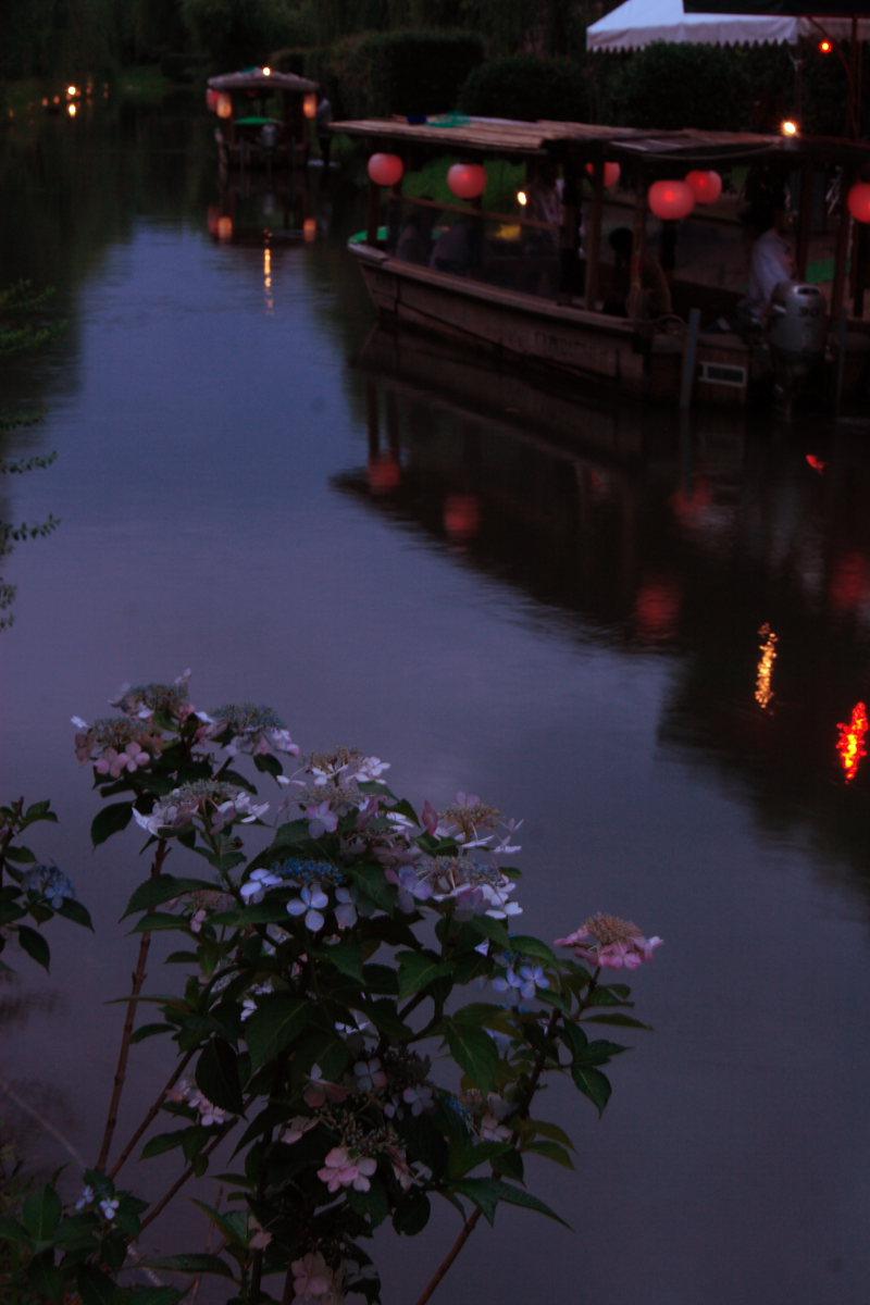 京都 伏見/十石船 ライトアップ_f0021869_153219.jpg
