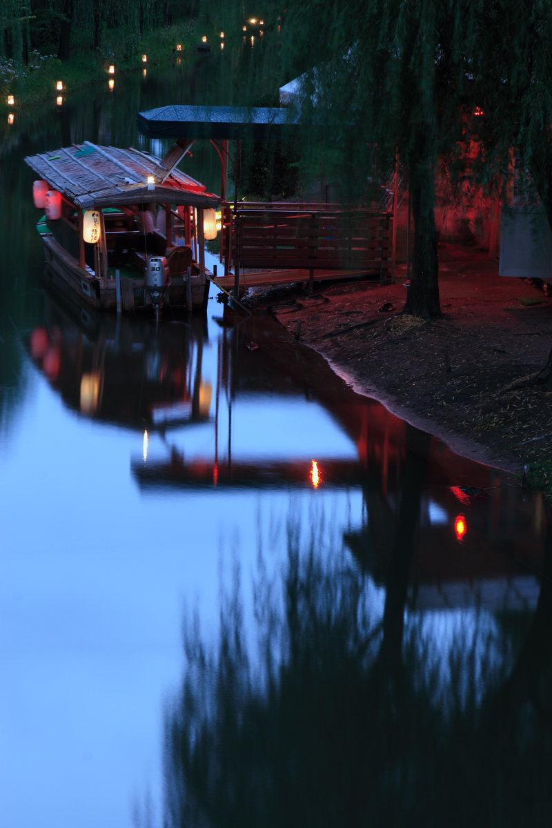 京都 伏見/十石船 ライトアップ_f0021869_154732.jpg