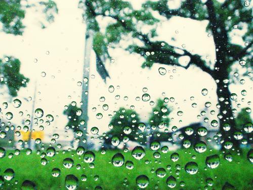 雨_f0060898_23312267.jpg