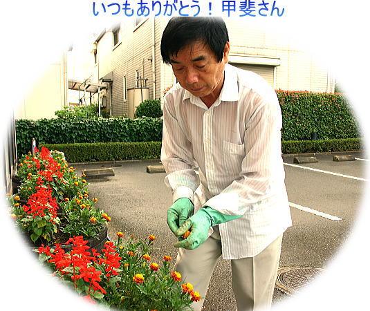 いつも ありがとうございます お花のお世話を 甲斐さん。_d0070316_855799.jpg