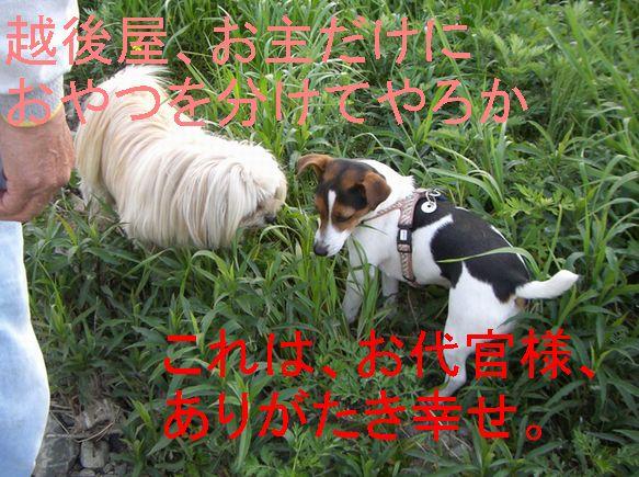 f0053952_20115475.jpg