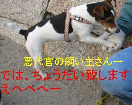 f0053952_20133429.jpg