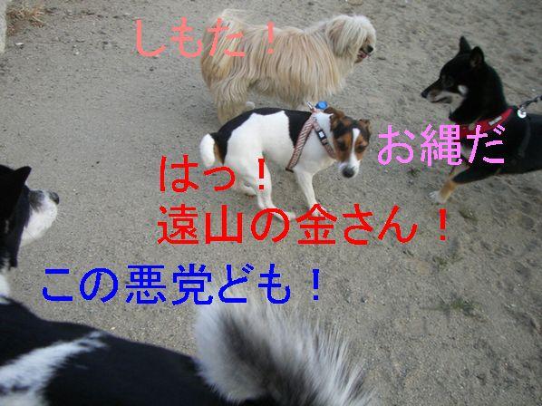f0053952_20154141.jpg