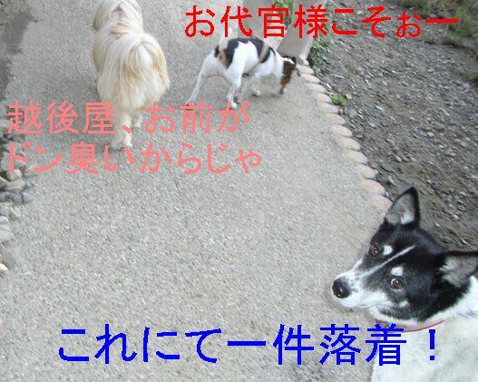 f0053952_2017575.jpg
