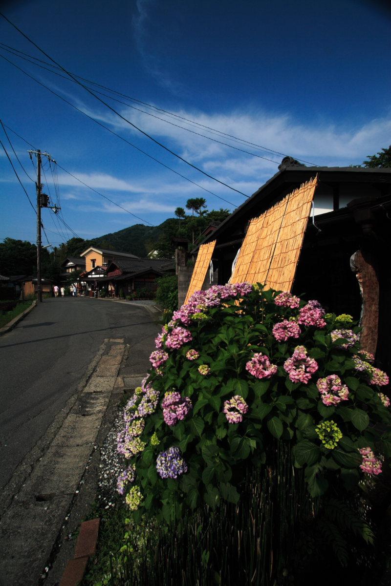 京都 伏見界隈/雨_f0021869_094696.jpg