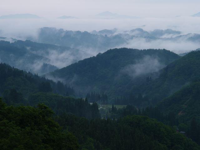 雨の場合は靄(もや)?_a0025576_0382432.jpg