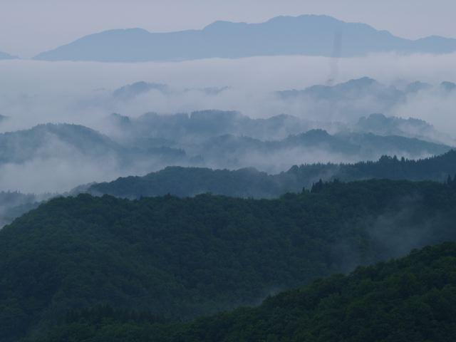 雨の場合は靄(もや)?_a0025576_039355.jpg