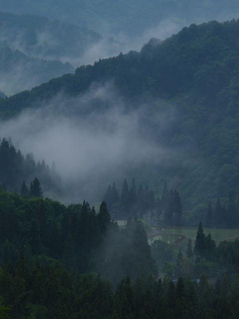 雨の場合は靄(もや)?_a0025576_039426.jpg