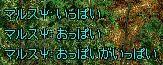 d0012933_5104.jpg