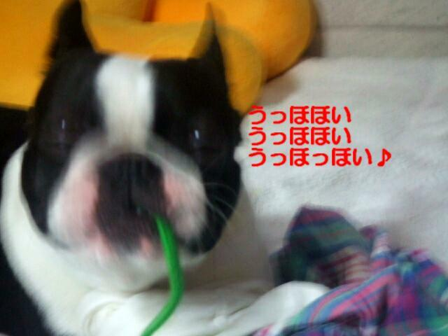f0059334_10552182.jpg