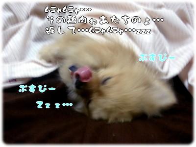 b0078073_22284965.jpg