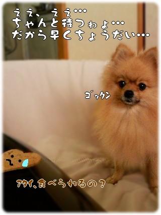 b0078073_22352037.jpg
