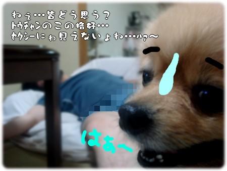 b0078073_22374531.jpg