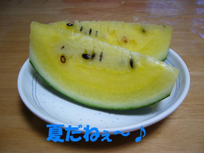 d0032004_2010192.jpg