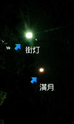 d0044736_14491738.jpg