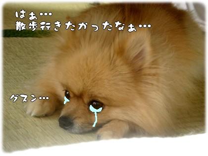 b0078073_22561866.jpg