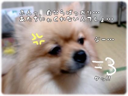 b0078073_2259237.jpg