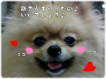 b0078073_2301082.jpg