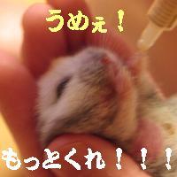 b0016983_2075266.jpg