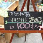 b0079821_061468.jpg