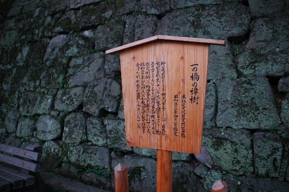 和歌山城公園内を散策_b0093754_0184119.jpg