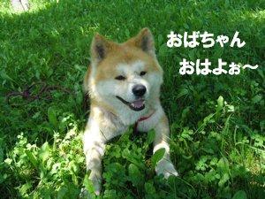 b0081503_1655546.jpg