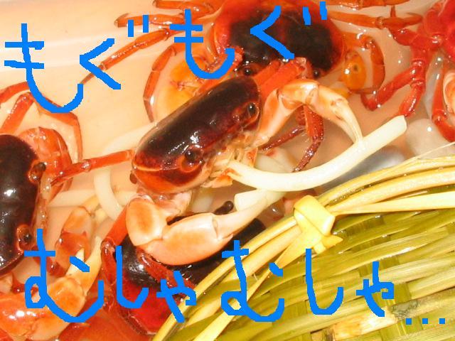ぎゃぁぁぁぁぁ!!!_c0064514_2153893.jpg