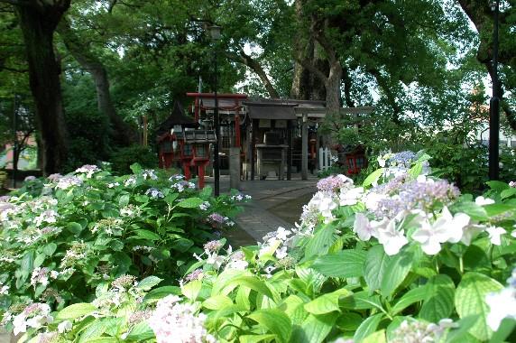 和歌山城公園内を散策  2_b0093754_0462213.jpg