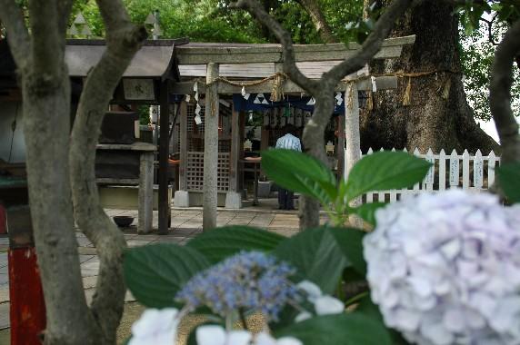和歌山城公園内を散策  2_b0093754_0463333.jpg