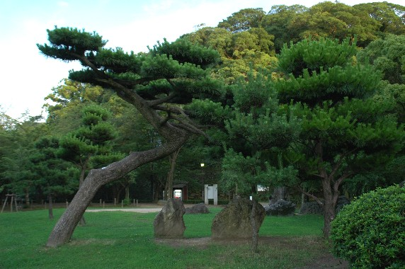 和歌山城公園内を散策  3_b0093754_22462955.jpg