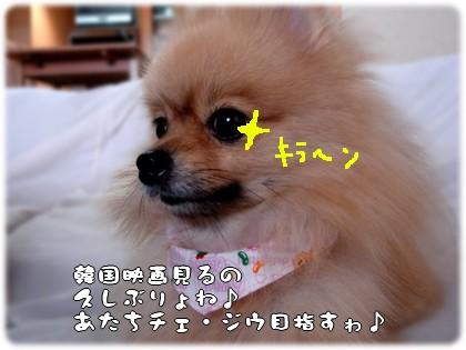 b0078073_0165356.jpg