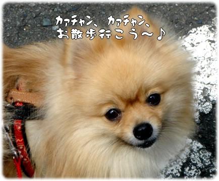 b0078073_0201071.jpg