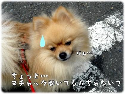 b0078073_0241359.jpg