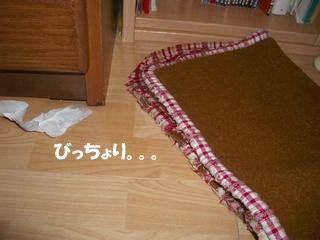 b0109692_1756311.jpg